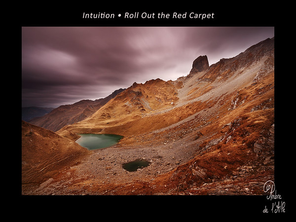 Intuition • Roll Out the Red Carpet