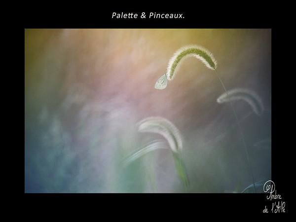 Palette & Pinceaux.