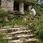- Ce site de Ruines Mayas, se trouvent dans la forêt tropicale Lacandone et est toujours préservé par les Indiens Lacandons. Ils défendent leur droit de laisser en état, aussi bien ce site sacré que leur forêt. <br /> - Este lugar de Ruinas Mayas se encuentran en el bosque tropical Lacandone y siempre se preserva por los Indios Lacandons. Defienden su derecho a dejarlo en estado, tanto este lugar consagrado como su bosque.<br /> - This site of Mayas Ruins are in the tropical forest Lacandone and it is always preserved by the Lacandons Indians. They defend their right to leave it in state, as well this crowned site as their forest.<br /> - Dieser Ruinstandort Mayas befinden sich im tropischen Wald Lacandone, und er wird immer von den Indern bewahrt Lacandons. Sie verteidigen ihr Recht, es in Stand zu lassen, sowohl dieser gekrönte Standort als auch ihr Wald.
