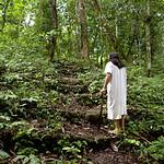 - Ce site de Ruines Mayas, se trouvent dans la forêt tropicale Lacandone et est toujours préservé par les Indiens Lacandons. Ils défendent leur droit de laisser en l'état, aussi bien ce site sacré que leur forêt. <br />  - Este lugar de Ruinas Mayas se encuentran en el bosque tropical Lacandone y siempre se preserva por los Indios Lacandons. Defienden su derecho a dejarlo en este estado, tanto este lugar consagrado como su bosque.<br />  - This site of Mayas Ruins are in the tropical forest Lacandone and it is always preserved by the Lacandons Indians. They defend their right to leave it in this state, as well this crowned site as their forest.<br />  - Dieser Ruinstandort Mayas befinden sich im tropischen Wald Lacandone, und er wird immer von den Indern bewahrt Lacandons. Sie verteidigen ihr Recht, es in Stand zu lassen, sowohl dieser gekrönte Standort als auch ihr Wald.
