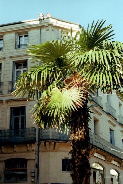 Photo argentique couleur dans les ruelles de Montpellier