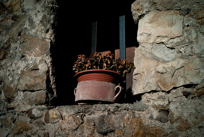 Flower pot by the window in Biot village, France, French Riviera.