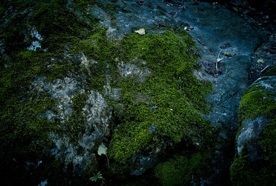 Green rock on Saut du Loup river, France, French Riviera.