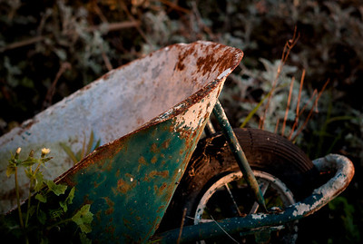 Abandoned wheelbarrow in Cap d'Antibes
