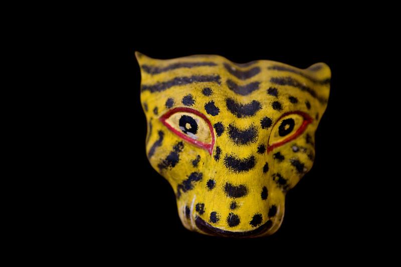 Pourquoi le jaguar a les yeux jaunes ?