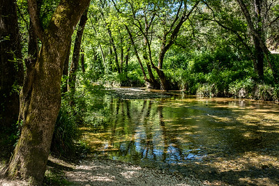 Les Rives de la Brague, Biot, Alpes maritimes, France