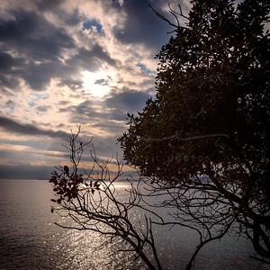 petite balade au bord de la mer | short walk by the sea