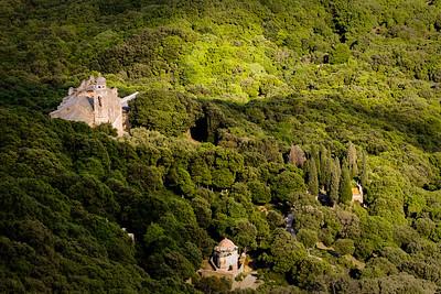 Le Maquis en Corse.