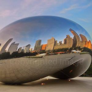 Bean in Chicago