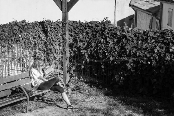 la lecture au soleil | reading in the sun