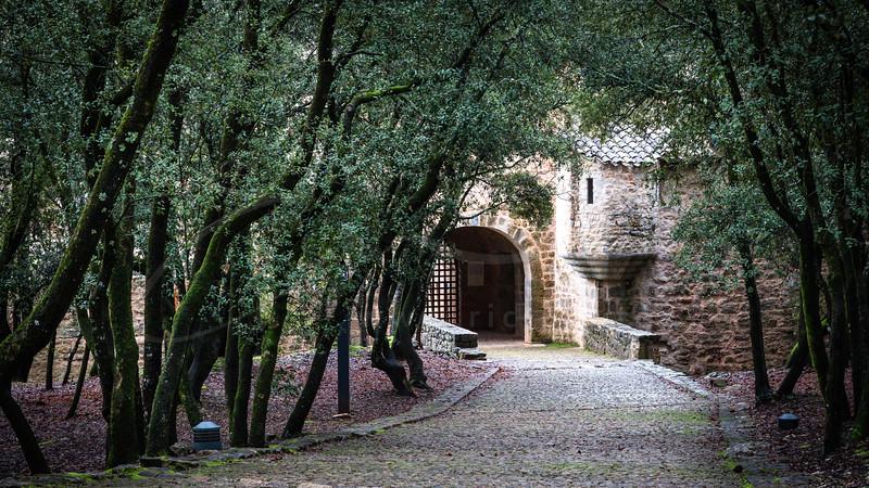 le chemin enchanté vers l'Abbaye du Thoronet