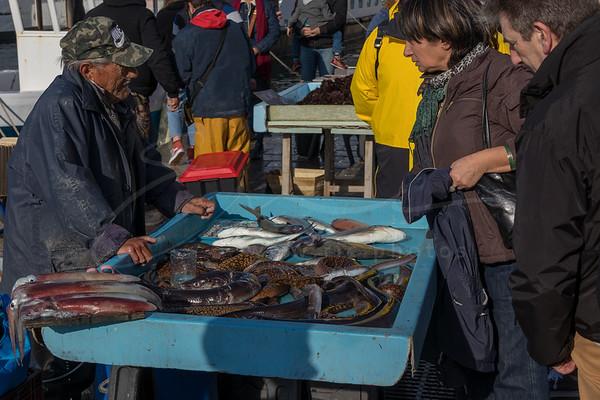 le poissonnerie au Vieux Port | fish market at the old port