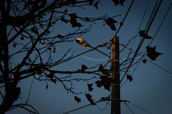 coucher du soleil contre l'éclairage public | sunset vs. street lamp