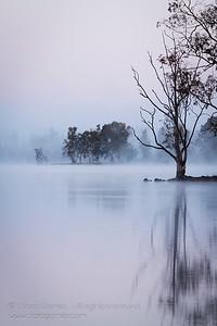 Peaceful Dawn
