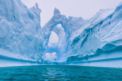 From the Fernande`s logbook: The icy cathedral!! Even the giant icebergs find their peace on the Ice Cemetery. Astonishing vistas of the antarctic icebergs.  Somewhere between the Pleneau e Booth islands.  #polarexpedition #sailboat #veleiro #wild #adventure #sailingexpedition #fernande #bombazafernande #iceberg #ice #Antarctica #Antartida