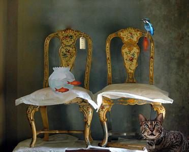 "Tyntesfield take a seat "" twins"" allmost"