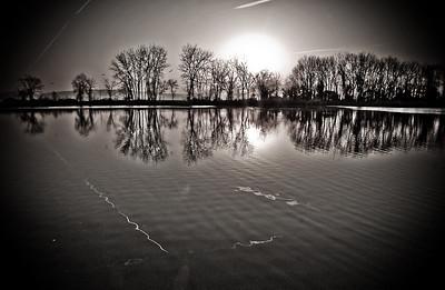 Reflective Ice
