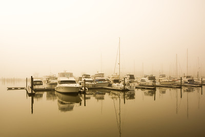 Warm Misty Marina