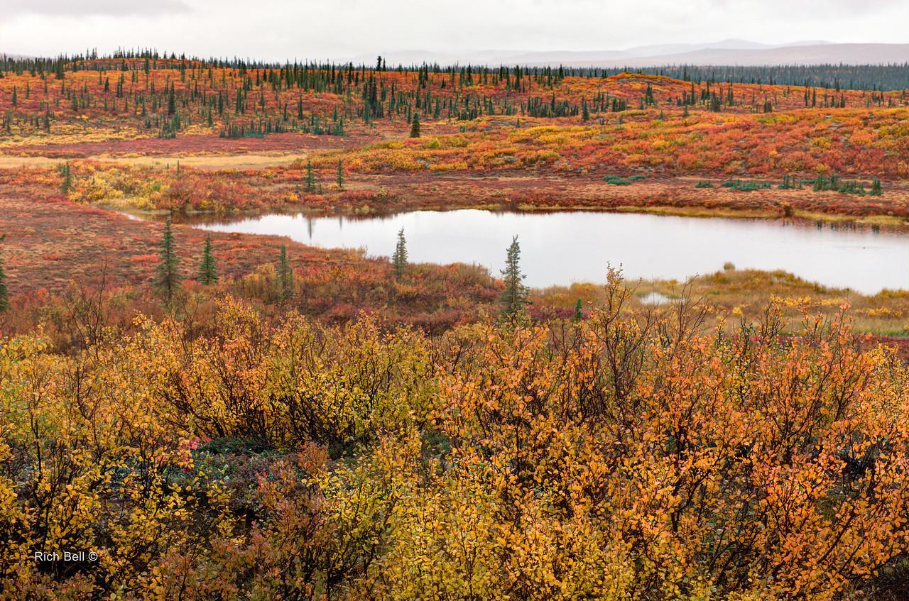 20130911 Alaska Central -0091_2_3_fused