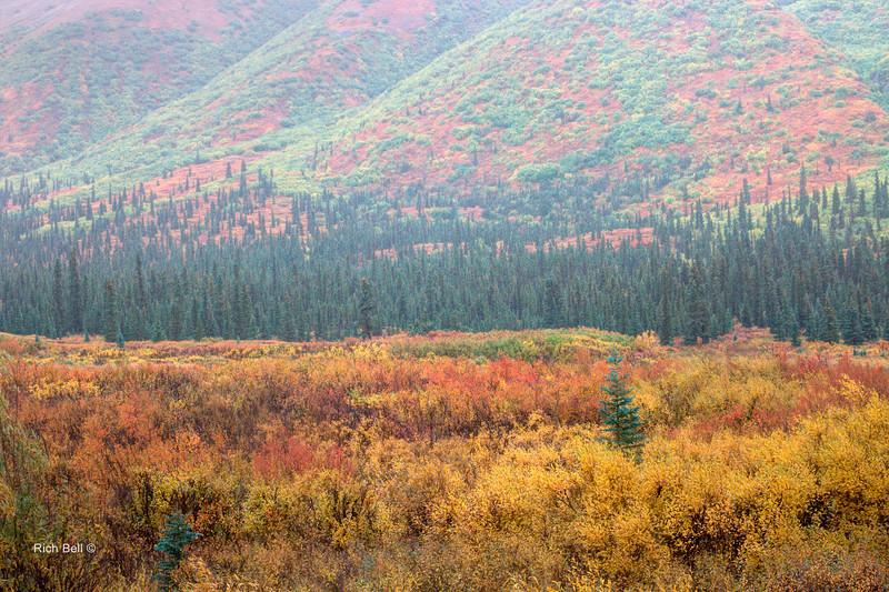 20130911 Alaska Central -0097_8_9_fused