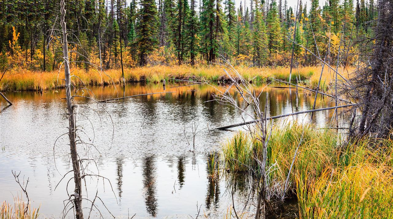 20130912 Alaska Central -0360