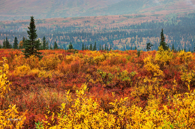 20130911 Alaska Central -0072_3_4_fused