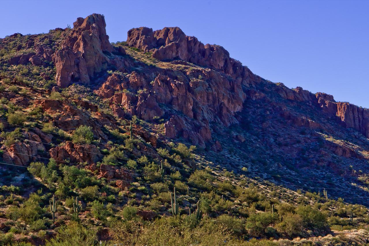 20110113_Arizona_0069