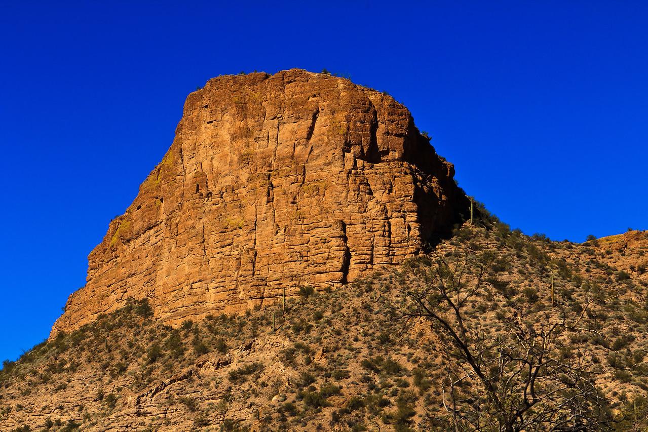20110113_Arizona_0054