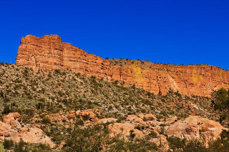 20110113_Arizona_0057