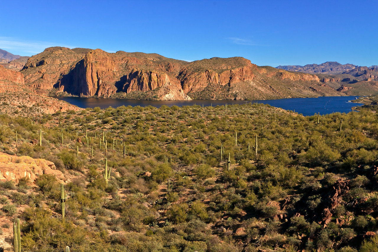 20110113_Arizona_0083