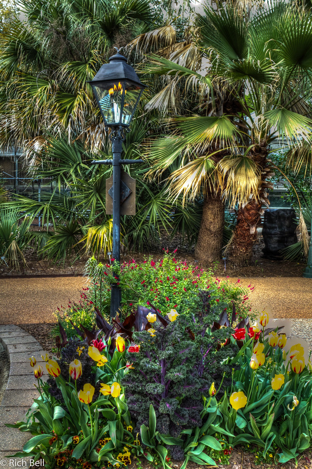 20120324 Atlanta Botanical Gardens -0248_49_50_tonemapped
