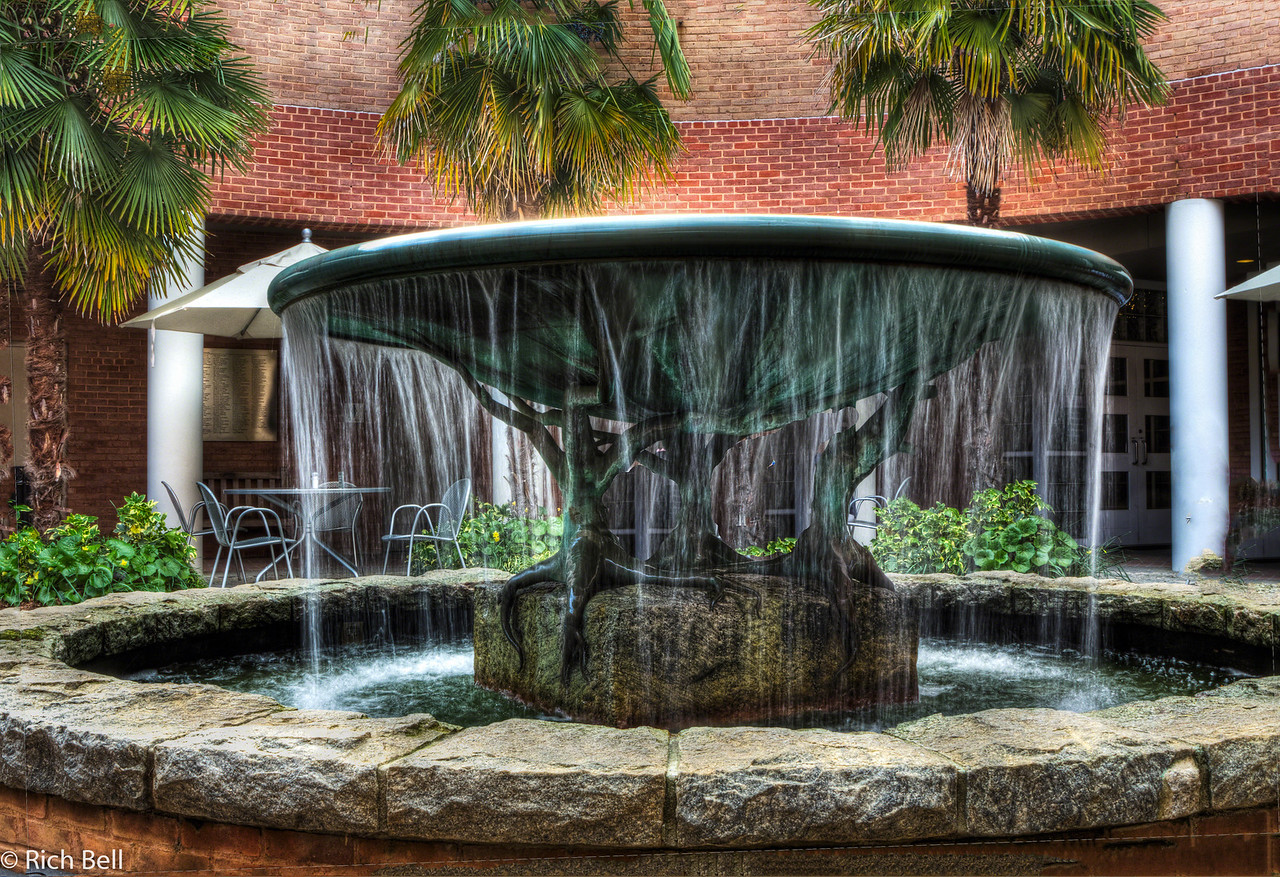 20120324 Atlanta Botanical Gardens -0380_1_2_tonemapped