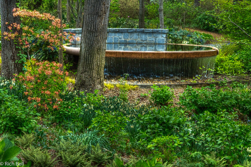 20120324 Atlanta Botanical Gardens -0410_1_2_tonemapped