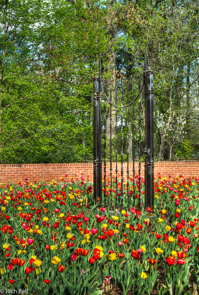 20120324 Atlanta Botanical Gardens -0365_6_7_tonemapped