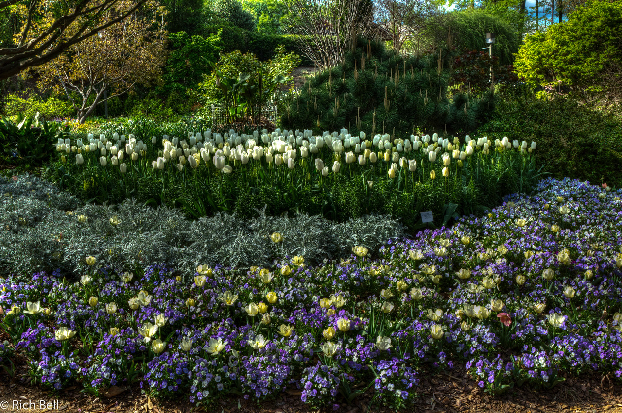 20120324 Atlanta Botanical Gardens -0332_3_4_tonemapped