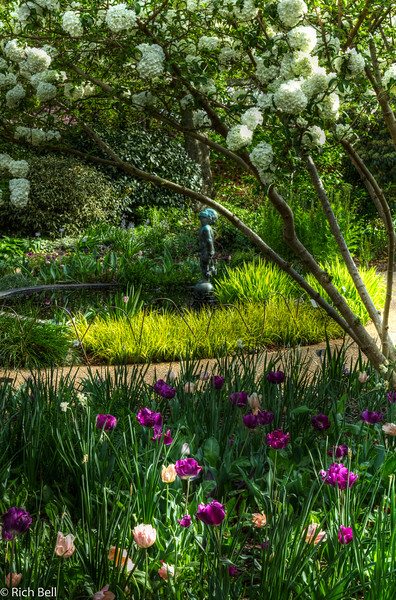 20120324 Atlanta Botanical Gardens -0305_6_7_tonemapped