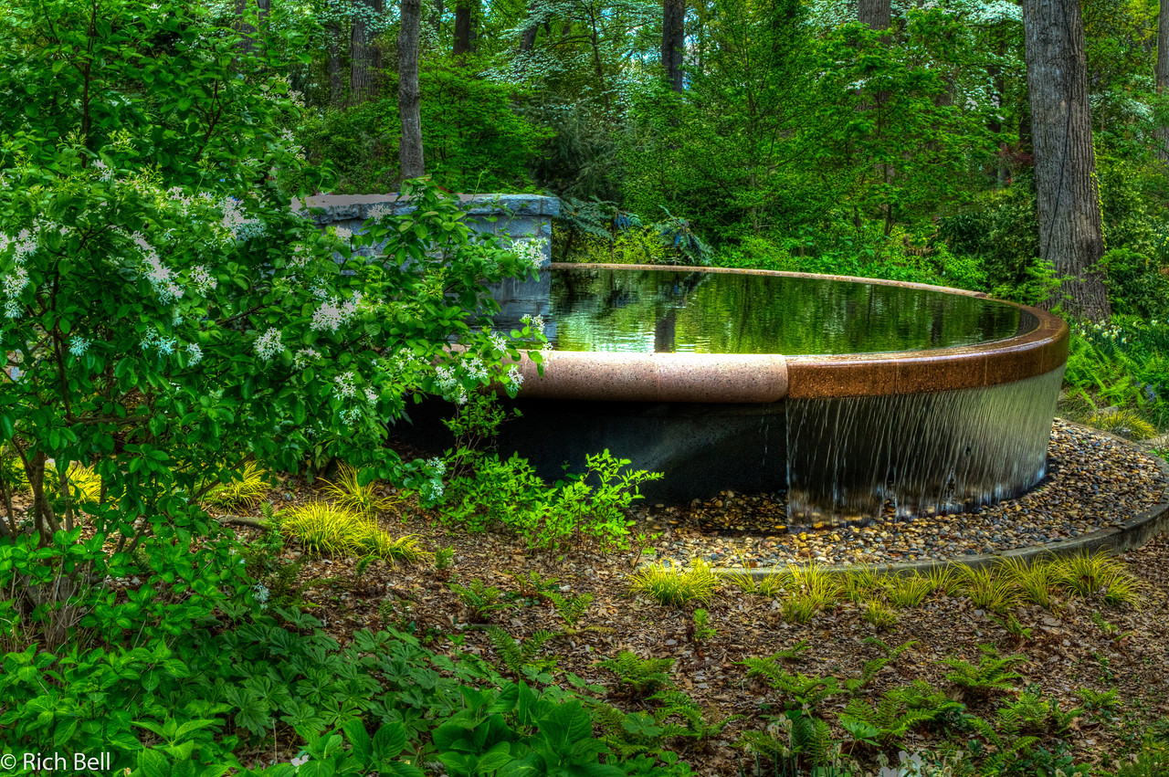 20120324 Atlanta Botanical Gardens -0032_3_4_tonemapped_tonemapped