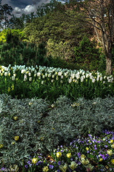 20120324 Atlanta Botanical Gardens -0326_7_8_tonemapped