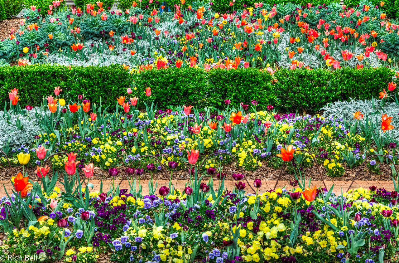 20120324 Atlanta Botanical Gardens -0160_1_2_tonemapped