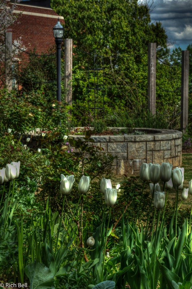 20120324 Atlanta Botanical Gardens -0206_7_8_tonemapped