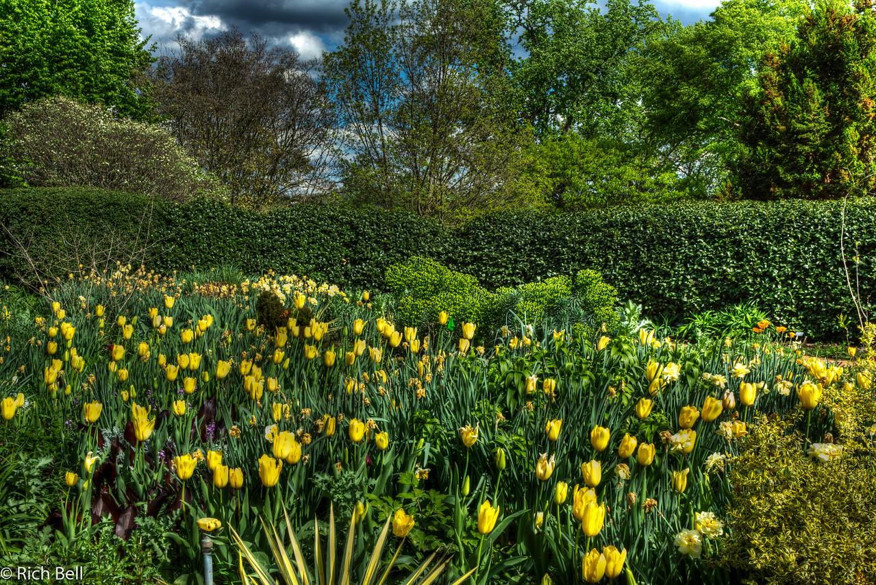 20120324 Atlanta Botanical Gardens -0233_4_5_tonemapped