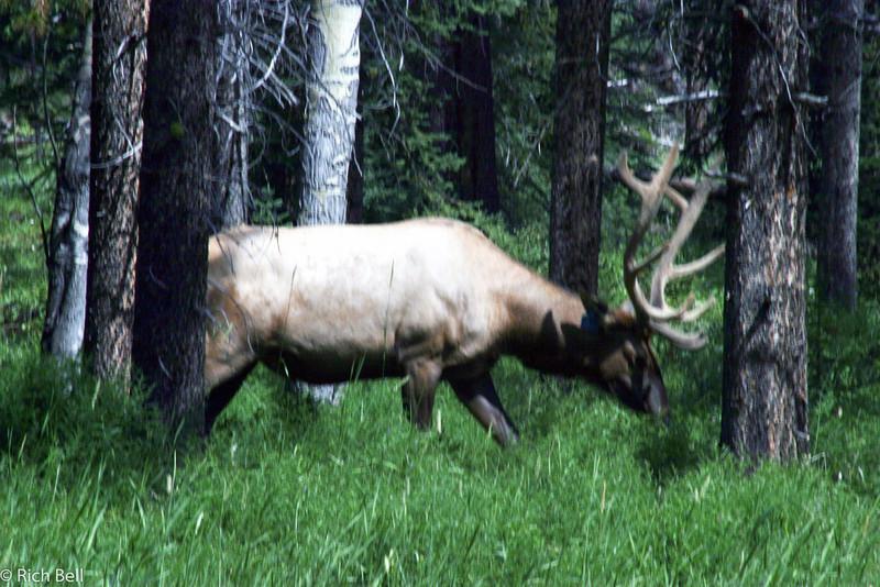 20030808 Banff Canada 0363