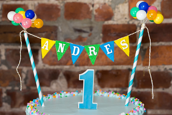 Andy's 1st Birthday