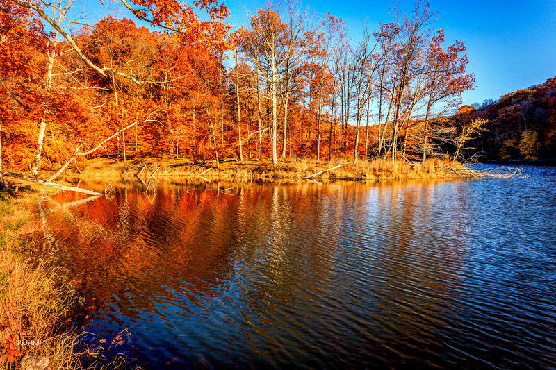20131103  Vacation -0007_8_9_fused