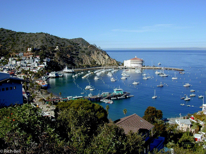 20100721Avalon Bay Catalina Island 0022
