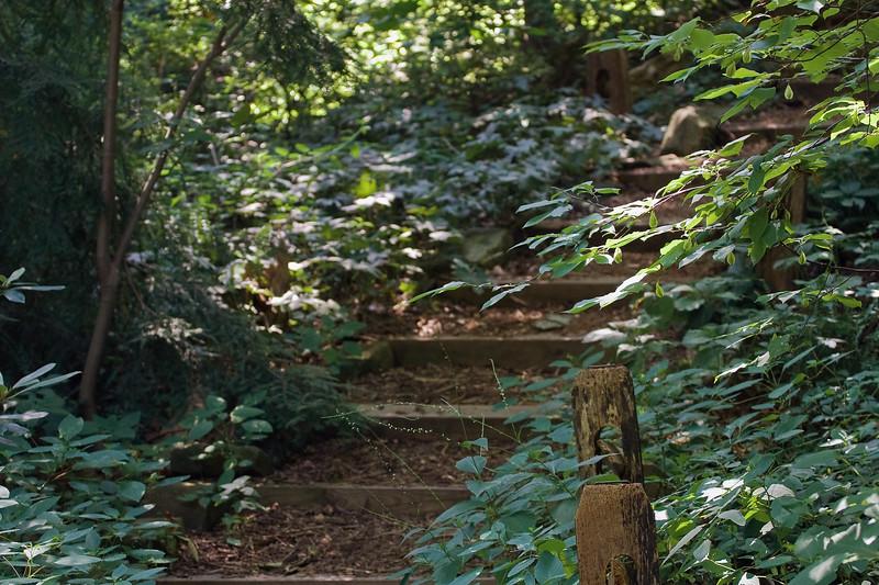 Cleveland Botanical Garden, Ohio 0016