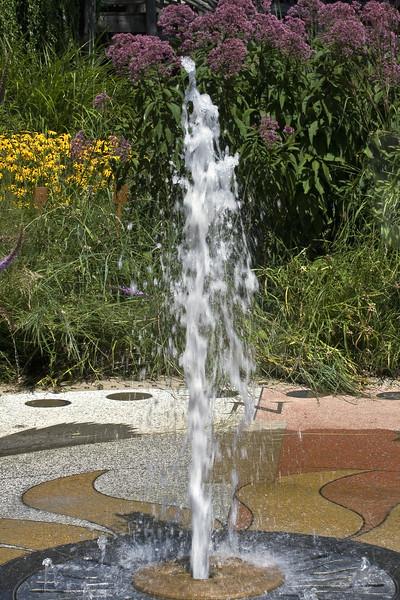 Cleveland Botanical Garden, Ohio 0024