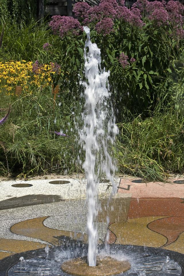 20080816 Cleveland Gardens_0910