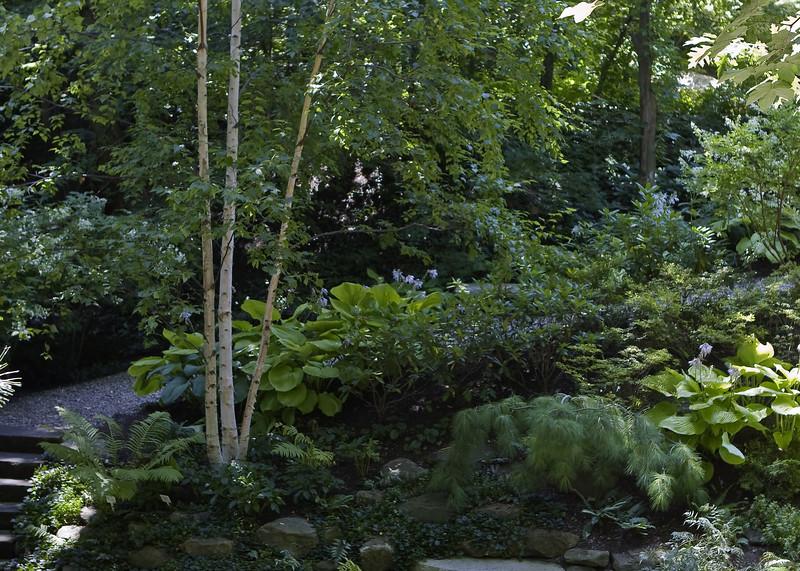 Cleveland Botanical Garden, Ohio 0036