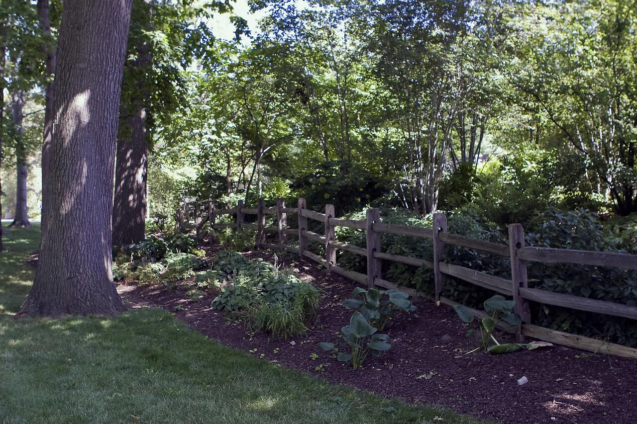 20080816 Cleveland Gardens_0928 copy